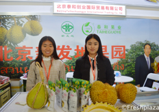 Beijing Taihechuangye International Trading Co., Ltd. They sell all kind of imported fruits, for example, Thai durian, longan, mangosteen, pomelo. //北京泰和创业国际贸易有限公司,他们出售各种进口水果,例如泰国榴莲、龙眼、山竹、柚子。