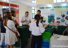 Team of Zhejiang Zhengji Plastic Industry Co., Ltd. busy talking with visitors. They are specialised in folding baskets, crates and mesh crates for fruits and vegetables. // 浙江正基塑业有限公司团队正忙着与到访者交谈。他们专门从事水果和蔬菜的塑料折叠筐、塑料折叠箱和塑料套叠筐。