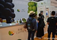 Team of Lurra (Shenzhen) Trading Co., Ltd. busy presenting their products to visitors. They mainly trade grapes, persimmon, strawberry and loquat.乐拉(深圳)贸易有限公司团队忙着向参观者展示他们的产品。他们主要经营葡萄、柿子、草莓和枇杷。