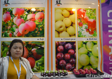 Ms. Vivian from Shaanxi Shengfeng ImpExp Trading Co.,Ltd. Focused on apple export.