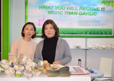 Qingdao Factum does not only export Chinese garlic, it also develops and produces garlic machines that can do all kinds of tasks, including planting, harvesting and sorting. To the right is Lydia Xin, the company's general manager. She is at Fruit Logistica together with Jokina Liu // 青岛福通美洲贸易有限公司不仅出口中国大蒜,还开发并生产可以做各种各样的任务,包括种植、收割和分拣的大蒜机器。右边是该公司的总经理Lydia。她和业务部门经理刘忠艳一起出席了果蔬展。