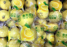 Chinese domestic lemons branded and marketed by Beijing importer Tai He Guo Ye. // 北京泰和创业国际贸易有限公司打造品牌和营销的中国国产柠檬。