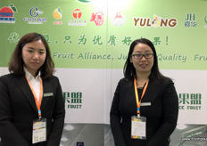 To the right is Holly Wu, General Manager of the recently launched Hebei Choice Fruit Alliance, a cooperation between Hebei pear growers, packers and exporters. // 右边是最近成立的河北优果盟企业管理有限公司的总经理吴雅琼,该公司是河北梨种植者、包装商和出口商之间的合作机构。