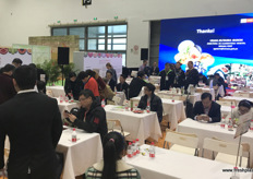 Activities at the business round table, organised on the Saturday afternoon. // 在星期六下午组织的商务圆桌会议上的活动。