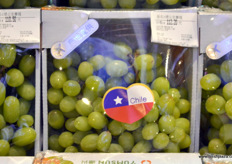 Gift packaging filled with Chilean grapes. The origin is clearly market on the box. // 装满智利葡萄的礼品包装。原产 地被清晰地显然在盒子上。