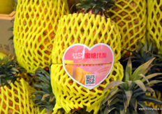 Pineapples from Taiwan. // 来自台湾的凤梨。
