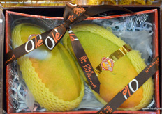 Gift packaging with two mangoes from Southern China. // 装有来自中国南部的两个芒果的礼品包装。