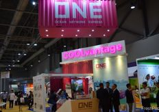 Busy conversations at the booth of ONE. // ONE展位前进 行的热烈交谈。