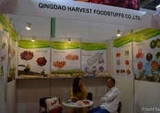 Sasa Jiang, Managing Director of Qingdao Harvest Foodstuffs Co.,Ltd in conversation with a client. // 青 岛华松食品有限公司的执行董事Sasa Jiang与一个客户进行交谈。